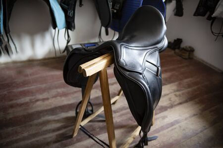 Horse stud. Riders gear. Saddle 스톡 콘텐츠