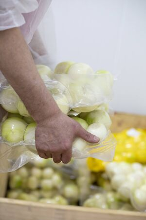 A food factory worker spills onion from the sack.
