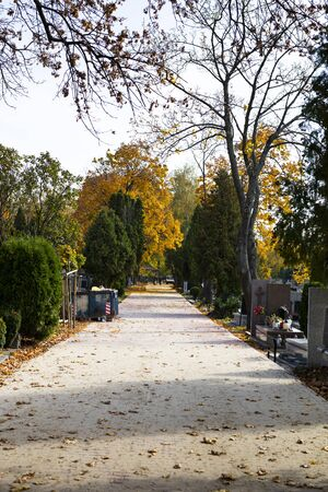 Path between tombs on a Christian cemetery on a sunny autumn day. All Saints Day. Tombstones decorated with flowers and grave candles. Foto de archivo