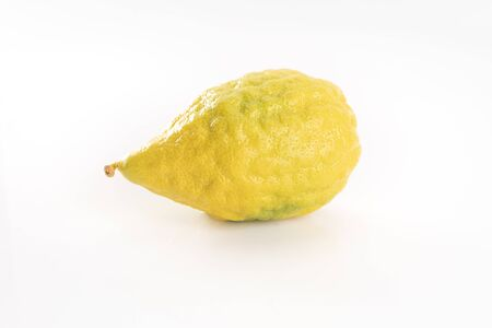 A ripe citron fruit isolated on white background. Etrog - Jewish Sukkot festival symbol, part of the lulav set of four species. Foto de archivo