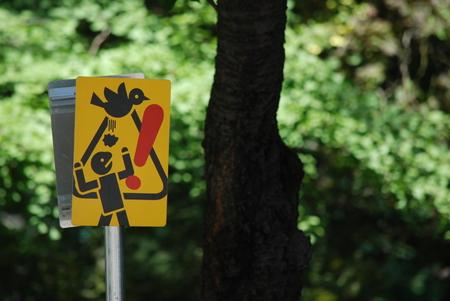 Beware bird bomb