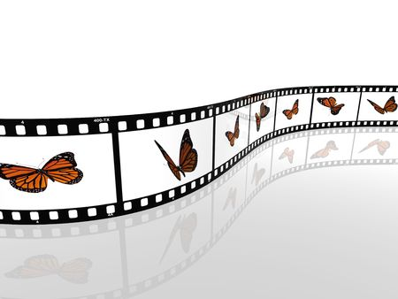 Abstrat image of a monarch butterfly on a photographic film cell
