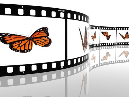 Image of a monarch butterfly on a film cell Stock Photo