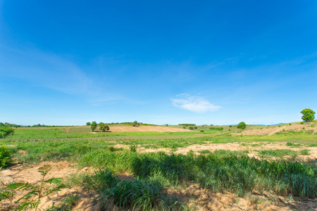 green field with blue sky.