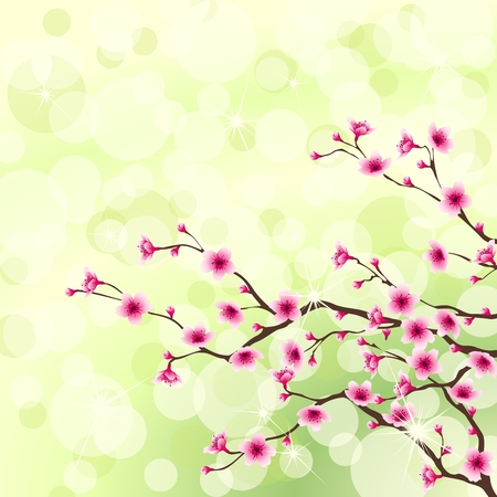 Blossoming cherry tree branches against a green background. Graphics are grouped and in several layers for easy editing. The file can be scaled to any size. Vector