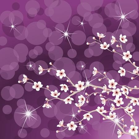 Blühende Kirschenbaum Niederlassungen vor einem violetten Hintergrund. Grafiken werden gruppiert und in mehreren Schichten für einfache Bearbeitung. Die Datei kann auf jede beliebige Größe skaliert werden. Standard-Bild - 8668249