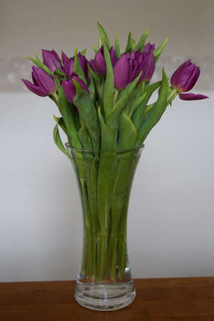 bouquet of purple tulips in vase on table with white and gray wall in background