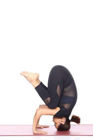 forearms: Asian Woman Yoga Teacher Instructor demonstrate each pose of lesson on matte, black dress suite leotard fashion legging, full length, studio lighting white background isolated