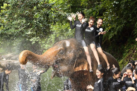 chang: Bangkok, Thailand - July 4, 2017 ; Camping Outting Trip of Miss Tourism Queen Thailand 2017 at Koh Chang, Trat. Bath shower wash elephant in river, once in life time