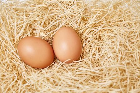 thatch: Eggs set on thatch Stock Photo