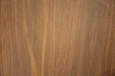 Detail of wood texture background Archivio Fotografico