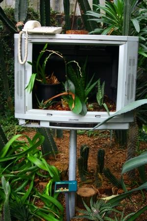 programme: Plant Programme