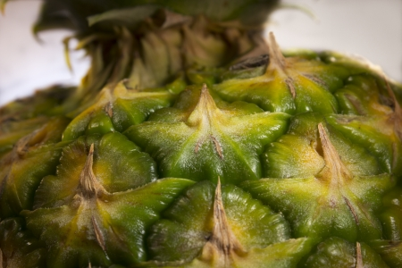 exotic plant: An extreme close up of a pineapple and stem. Stock Photo