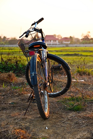 Old Bicycle in the field in the north of thailand Stock Photo