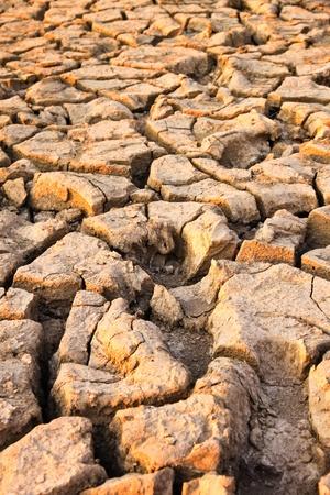 Dry soil photo