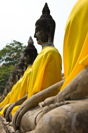 A row of old buddha
