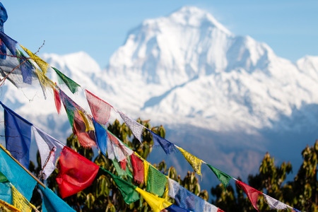 ヒマラヤ山脈、ネパールのアンナプルナ ベース キャンプ エリアでの仏教の祈りのフラグ。