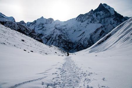 Trekking in Annapurna base camp, in Nepal