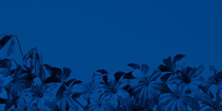 Classic Blue color of the Year 2020. Background with forget me nots in trendy color