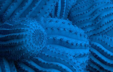 Unusual blue cactus background, Classic Blue color of the Year 2020, 3d illustration