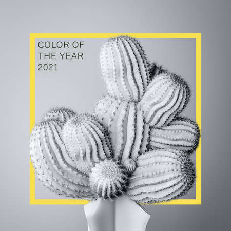 Cactus in trendy color of the year 2021 Ultimate Gray, Illuminating