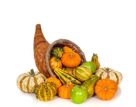 白い背景の上の秋または秋 conucopia。 沢山のホーンを収穫します。