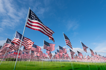 A field of hundreds of American flags. Commemorating veteran's day, memorial day or 9/11. Imagens