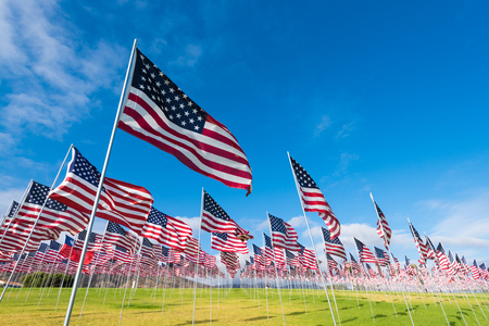 A field of hundreds of American flags.  Commemorating veteran's day, memorial day or 9/11. Фото со стока - 56793250