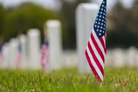 Pequeñas banderas americanas y lápidas en el cementerio nacional- Visualización del Día de los Caídos