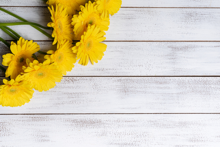 Yellow Daisies or mums on a white plank background with copy space