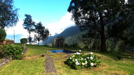 venezuela: Garden in Merida Venezuela