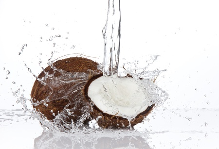 coconut milk: Fresh coconuts in water splash, isolated on white background