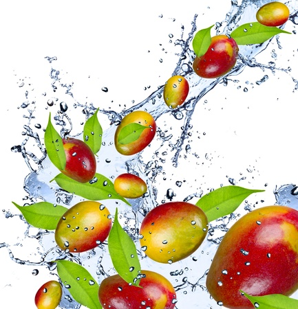juicy: Mango pieces falling in water splash, isolated on white background