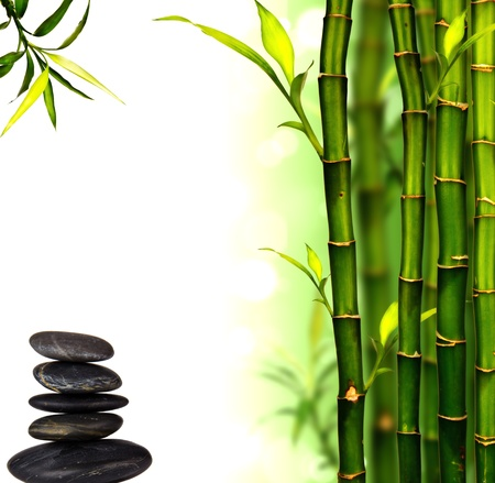wellness environment: Spa bamboo background Stock Photo