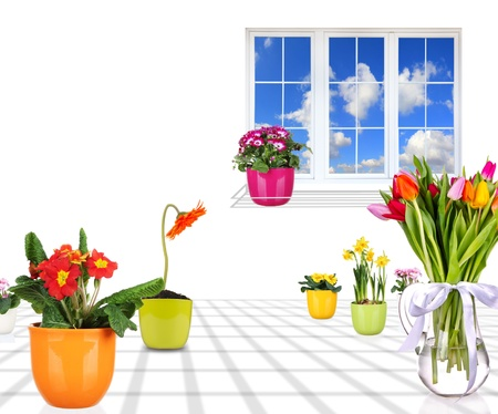 bow window: Beautiful spring flowers in home interior Stock Photo