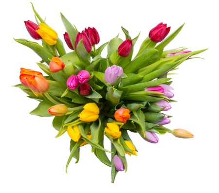 Bouquet of tulips, top view. Isolated on white background photo