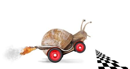 Caracol Speedy como piloto de carro. Conceito de velocidade e sucesso. As rodas são borrão por causa de movimento. Isolado no fundo branco