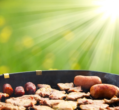 Summer grilling Stock Photo - 13672279
