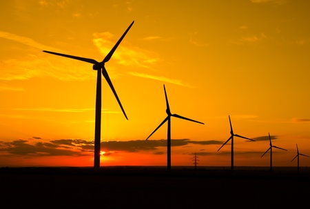 Windmills in sunset photo