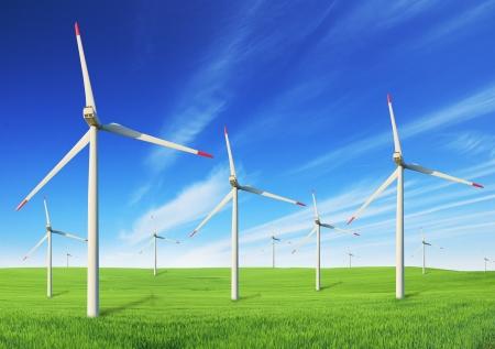 Windmills field photo