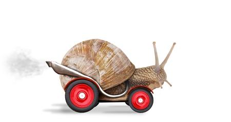 salyangoz: Araba yarışçısı gibi hızlı salyangoz. Hız ve başarı kavramı. Tekerlekler nedeniyle hareketli bulanıklık vardır. Beyaz zemin üzerine izole edilen