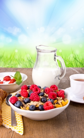 Healthy cereals breakfast with nature blur background photo