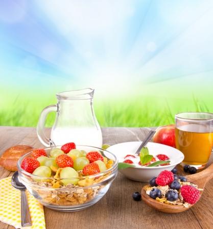 cereales: Los cereales de desayuno saludable con la naturaleza de fondo borroso Foto de archivo