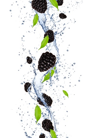 Fresh blackberries falling in water splash, isolated on white background photo
