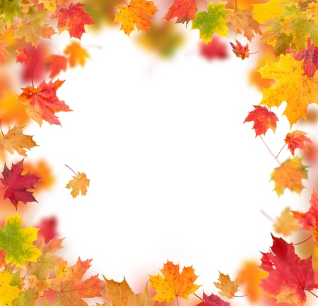 Autumn maple leaves in round shape with free space in center photo