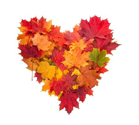 秋のハート記号が白い背景で隔離