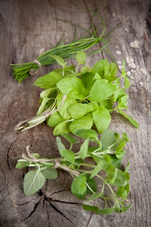 Fresh bunches of herbs on wooden table photo