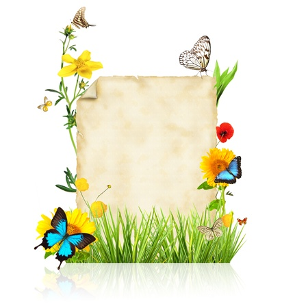 Concept of spring with blank paper for text isolated on white background