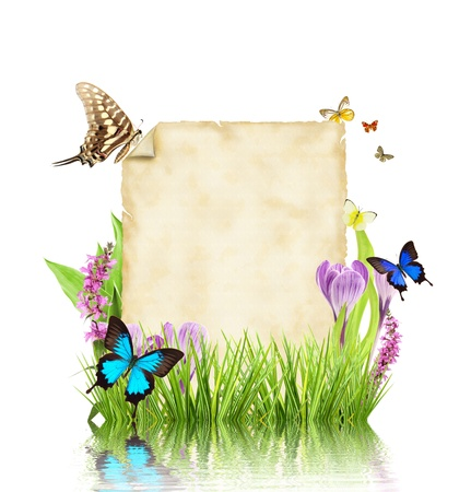 Concept of spring with blank paper for text  isolated on white background photo