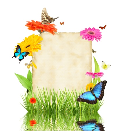 butterfly garden: Concept of spring with blank paper for text  isolated on white background